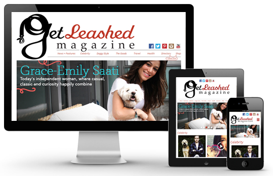 get_leashed_magazine_website_design_development_responsive_desktop_mobile_tablet